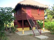 数ヵ月前に完成した蚕小屋。 糸から独自に作ろうという試みが始まっていた。