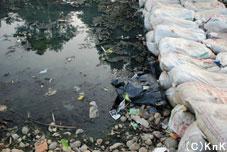 今までなかったところに水が溜まり、劣悪な環境がうまれた。 そんな環境でも元気に遊ぶ子どもたち。